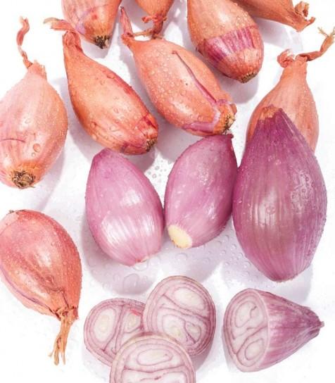 Cebolla Echalote