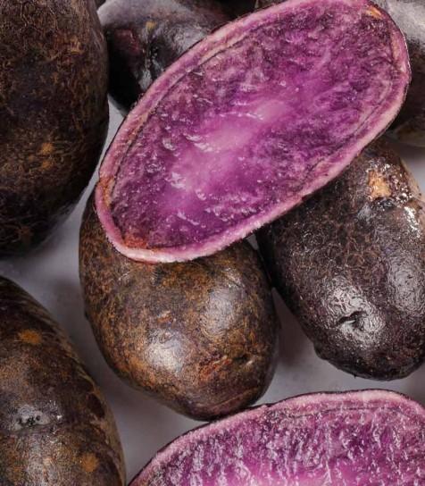Patata Violacea