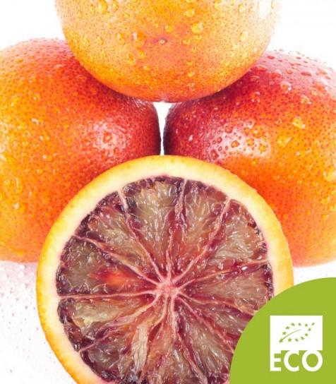 Naranja Sanguina Ecológica